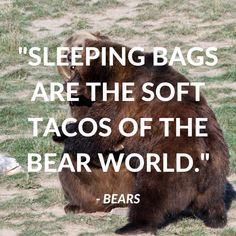 Ideas camping quotes funny adventure for 2019 Adult Camping Party, Camping Set Up, Camping Theme, Camping 101, Camping Humor, Truck Camping, Camping Life, Cute Camping Outfits, Camping Activities For Kids