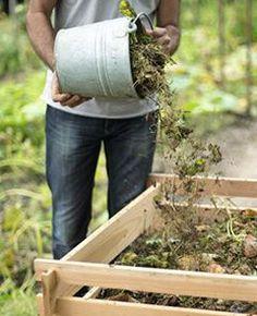 Le compost, ou l'art de faire de l'engrais avec ses déchets verts