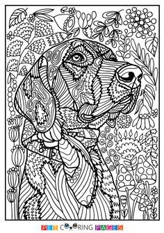 "Free printable Mutt coloring page ""Rodžers"" available for download. Simple and detailed versions for adults and kids."