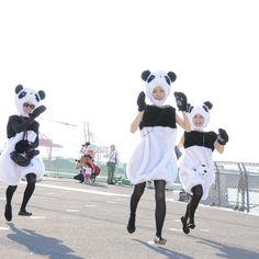 #mulpix ・ 【出没情報】 ・ 12月1日に奈良公園に出没予定です。 時間はたぶん2時以降になるかなー。 夢の鹿さんとの共演が実現します! 乞うご期待! ・ ・ #ダッシュ #もうしんどい #すぐへばる #次の日筋肉痛 #パンダ #panda #パンダス #japan #日本 #osaka #大阪 #女子 #girl #woman #blackwhite #monochro #japanesegirl #白 #黒 #モノクロ #カメラ #動物 #コスプレ #ポートレート #camera #animal #天保山