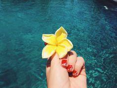frangipani-gili-air-piscine-1.JPG