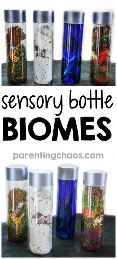 Sensory Bottle Biomes for Kids ⋆ Parenting Chaos - - These Sensory Bottle Biomes are a fun, yet simple way for kids to explore what makes up a biome and to compare how various plant and animal life has adapted to fit that biome. Sensory Bottles Preschool, Sensory Boxes, Sensory Table, Preschool Science, Sensory Activities, Sensory Play, Preschool Activities, Sensory Diet, Children Activities