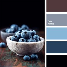 Color Palette #1154