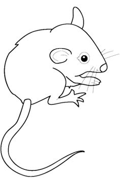 baby mouse coloring pages - Coloring Picture Of A Mouse