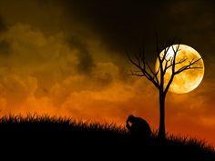 blogAuriMartini: Visão espírita sobre a Depressão