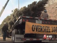 Colo. Gives Gift of U.S. Capitol Christmas Tree to Nation   KREX - News, Weather, Sports for Grand Junction   Montrose   Glenwood Springs - Coverage You Can Count On   Around the Region