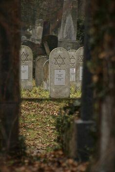 Vienna Jewish Cemetery