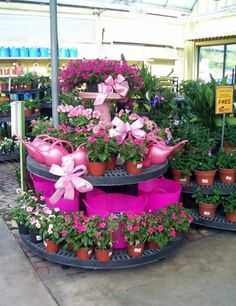 1000 images about garden centre on pinterest garden