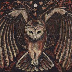 Tawny Owl by Vikkki on deviantART