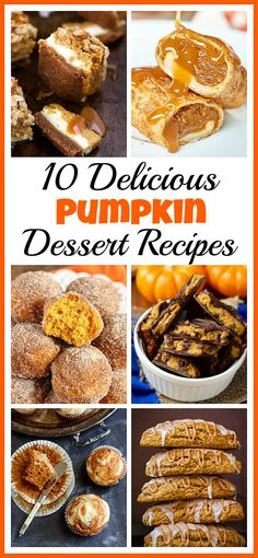 All kinds of yummy pumpkin desserts! Who doesn't love pumpkin! Not only are pumpkins full of healthy nutrients, but they're also really tasty! This fall, you have to try some of these pumpkin dessert recipes! Brownie Desserts, Oreo Dessert, Mini Desserts, Coconut Dessert, Desserts For A Crowd, Pumpkin Dessert, Party Desserts, Fall Desserts, Delicious Desserts