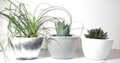 Concrete planter/ Round Gray planter /Planters / Concrete Pot