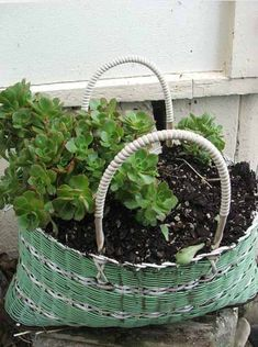 Patio Planters With Flowers Ideas | Old baskets for backyard decorating with flowers and plants, spring ...