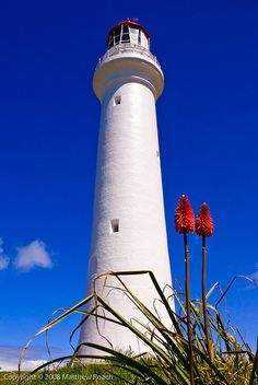 Split Point Lighthouse - Great Ocean  Road, Victoria, Australia