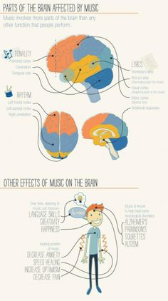 The Psychology of Music - by University of Florida. Brain Based Learning, Ways Of Learning, Learning Piano, Wernicke's Area, Motor Cortex, Music And The Brain, Visual Cortex, Expressive Art, Music Heals