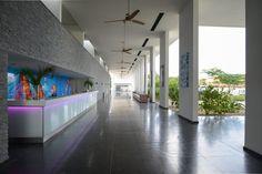 Project Papagayo Beach Jan Thiel Baai Curacao