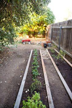 Putting in a backyard garden.