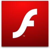 El programa Flash Player permite crear paginas web, animaciones, mini-juegos y casi cualquier aplicación para web o incluso de escritorio a través del lenguaje de programación ActionScript.