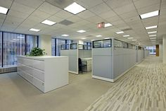 Office cleaning service provider firm. Contact homeessential.com.au