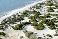 Playa de Es Trenc, Mallorca,Spain.