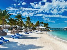 The southernmost city in the United States, Key West is a tropical paradise known for its funky vibes, pastel-hued conch-style…