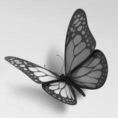 Très belle illustration de Eiko Ojala pour un article dans le New York Times à propos des papillons Monarques. 3d Butterfly Tattoo, Butterfly Drawing, Tattoo Sketches, Tattoo Drawings, Smal Tattoo, Borboleta Tattoo, Eiko Ojala, 30 Day Art Challenge, Black Phone Wallpaper