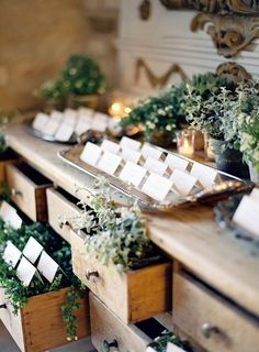 Beautiful display! Love the simple white escort cards nestled among the plants in drawers and on top in trays.