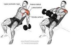 """Résultat de recherche d'images pour """"shoulder training"""""""
