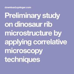 Preliminary study on dinosaur rib microstructure by applying correlative microscopy techniques