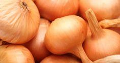 Pour tout savoir sur la culture des oignons à la maison. Rouges, jaunes, verts, échalottes, alouette!    In English also!