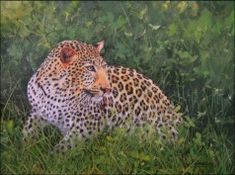 Leopard oil painting - David Stribling