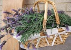Lavender Recipes - How to Cook with Lavender