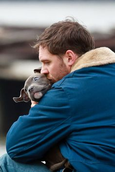 Cute pittie puppy and fine Tom Hardy! It doesn't get any better than that!!