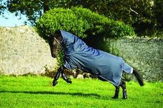 Just In:  Horseware Amigo B.... Check it out here! http://www.corkfarmequestrian.co.uk/products/horseware-amigo-bravo-1200d-turnout-rug-plus-with-hood-lite-no-fill-56-73?utm_campaign=social_autopilot&utm_source=pin&utm_medium=pin