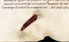 The Ingenuity and Beauty of Creative Parchment Repair in Medieval Books | Engelberg, Stiftsbibliothek, MS 16, 12th century