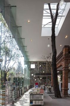 "cjwho: "" The Elena Garro Cultural Center is a thoughtful renovation of an old home into a modern cultural center by Fernanda Canales Arquitectura. Landscape Architecture, Interior Architecture, Interior And Exterior, Interior Design, Room Interior, Great Buildings And Structures, Modern Buildings, Building Renovation, Indoor Trees"