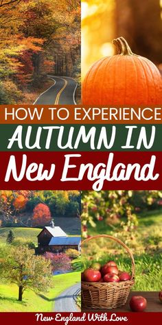 Of all places on earth, fall in New England may be one of the prettiest. The region is totally MADE for the autumn season, and every fall activity you could dream of can be found New England Fall, New England Travel, Fall In Connecticut, Maine In The Fall, Visit Maine, Autumn Scenes, Best Travel Guides, Autumn Activities, Best Vacations