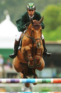 Horse ...Awesome Shot!