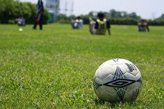 2008-06-01_10-22-51 Soccer Ball, Football, Sports, Soccer, Hs Sports, Futbol, European Football, European Soccer, American Football
