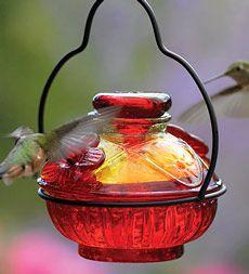 "Pot de Creme Hummingbird Feeder: A beautiful feeder made of hand-blown recycled glass. 6""H x 5""dia."