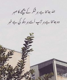 Urdu Funny Poetry, Poetry Quotes In Urdu, Urdu Quotes, Quotes Deep Feelings, Poetry Feelings, Islamic Love Quotes, Islamic Inspirational Quotes, Brother Sister Love Status, Aesthetic Captions