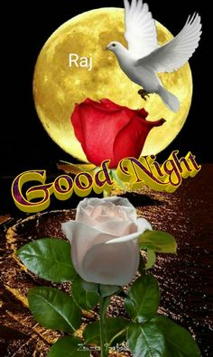 Good Night Blessings, Good Night Wishes, Good Night Sweet Dreams, Good Morning Good Night, Good Morning Images, Good Morning Quotes, Night Time, Good Night Qoutes, Good Night Messages