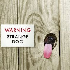 """Historically, the """"Beware Of Dog"""" sign has been used by dog owners to caution strangers at the door. But times have changed, and dog owners (and their dogs) now welcome guests to the door in a more lighthearted and humorous way. I Love Dogs, Puppy Love, Cute Dogs, Silly Dogs, Awesome Dogs, Funny Dog Signs, Hilarious Sayings, Funny Memes, 9gag Funny"""