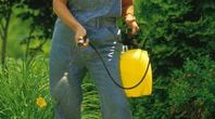 How to Make Insect Spray for a Lawn | eHow