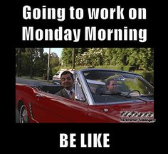 Laughing out loud pictures – Monday intensifies | PMSLweb