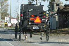 Some Amish have added little trailers on the back of their buggies for hauling things.