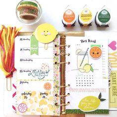 myplanningadventure: Apparently  it's a citrus kind of week.  #plannergirl  #plannerclips #plannertassel #filofax