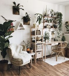 I am slightly crazy about mounted staghorn ferns. - Vintage Bohemian Home Home Office Decor, Aesthetic Room Decor, Room Ideas Bedroom, Home, Home Bedroom, House Interior, Apartment Decor, Interior Design Living Room, Aesthetic Bedroom