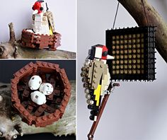 Bristol-based gardener and tree surgeon Tom Poulsom had been building LEGO replicas of cars, trucks, and spaceships for over a year when on one fateful day, his true passion literally landed in front of him. 'One day during a break from digging in a customer's garden a Robin Red Breast landed on my fork handle', […]