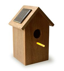 Solar Birdhouse (Billy could rig this. DIYable)