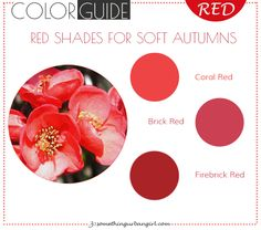 The best red color shades for Soft Autumn seasonal color women by 30somethingurbangirl.com | Find out which red shade is the best for your seasonal color palette // #fashion #style #red #bestred #bestcolor #softautumn
